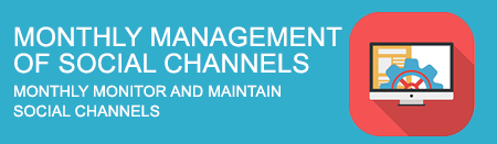Monthly Management of Social Channels